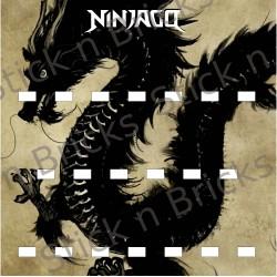 Fond de cadre Série Ninjago...