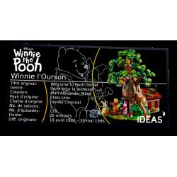 Plaque Type UCS Winnie...