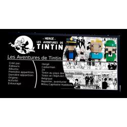 Plaque type UCS Tintin et...