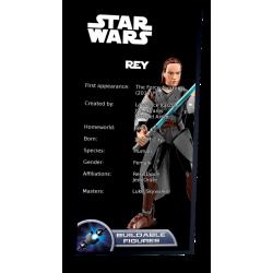 Plaque type UCS Rey réf 75528