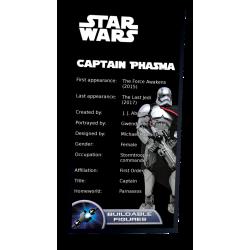 Plaque type UCS  Capitaine...