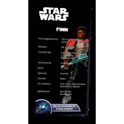 Plaque type UCS Finn réf 75116