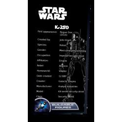 Plaque type UCS  K-2SO réf...