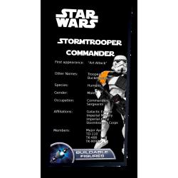 Plaque type UCS Commandant...