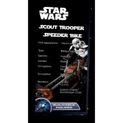 Plaque type UCS Scout...